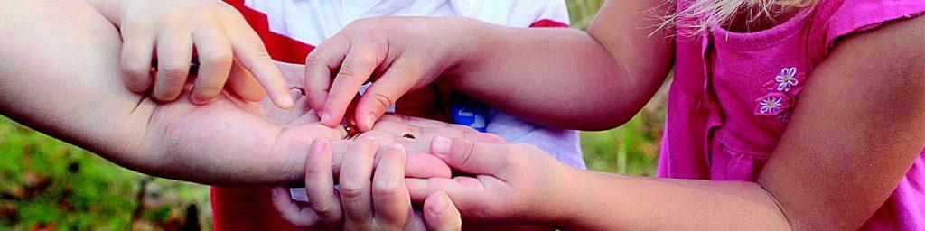 Kids share lady bug